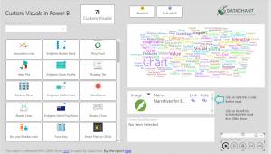 Custom Visuals Power BI Report